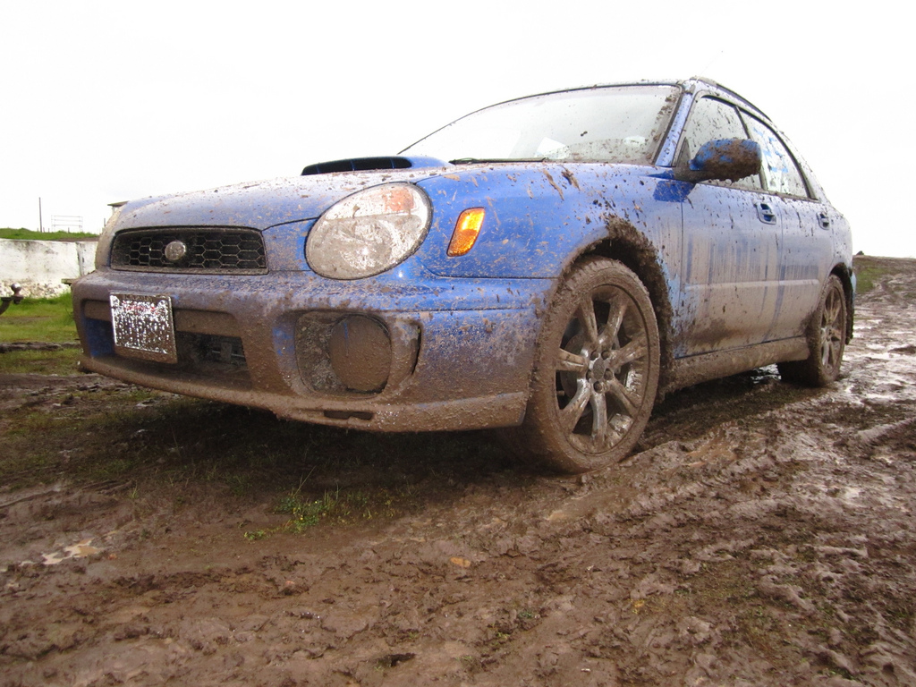 Scénario : Patrick Herbert - The muddy aftermath