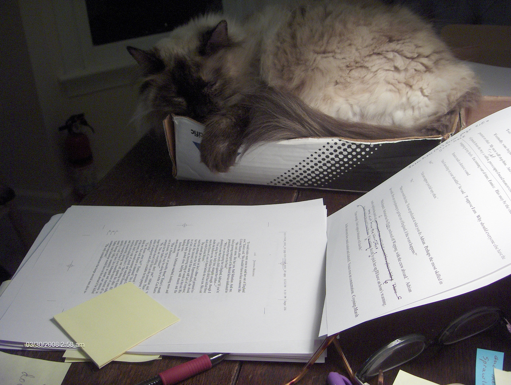 Relecture de manuscrit : Joanna Bourne - manuscript corrections